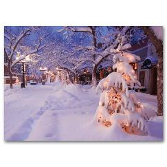 Discount Christmas Cards - After the Snowfall