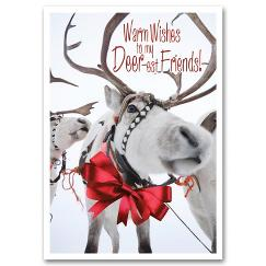 Sleigh Team Holiday Card